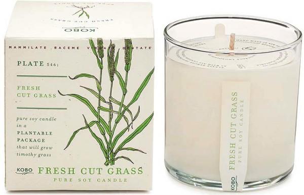 Duftkerze kobo cut grass