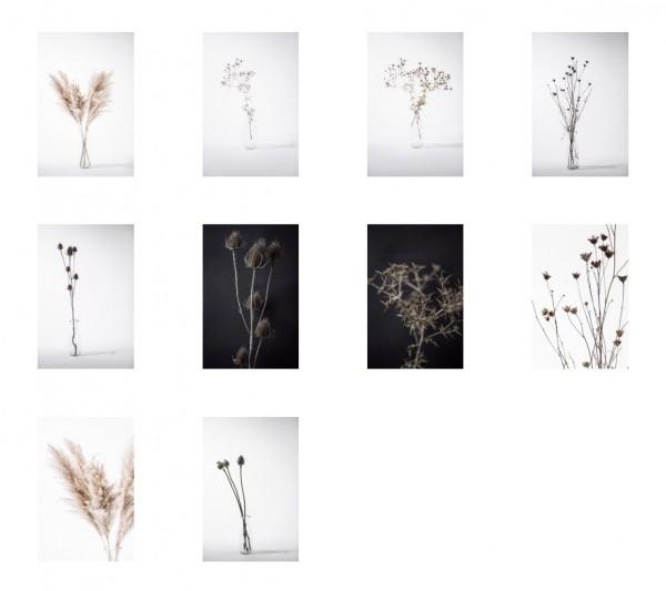 "Postkarten Set ""flowers"""